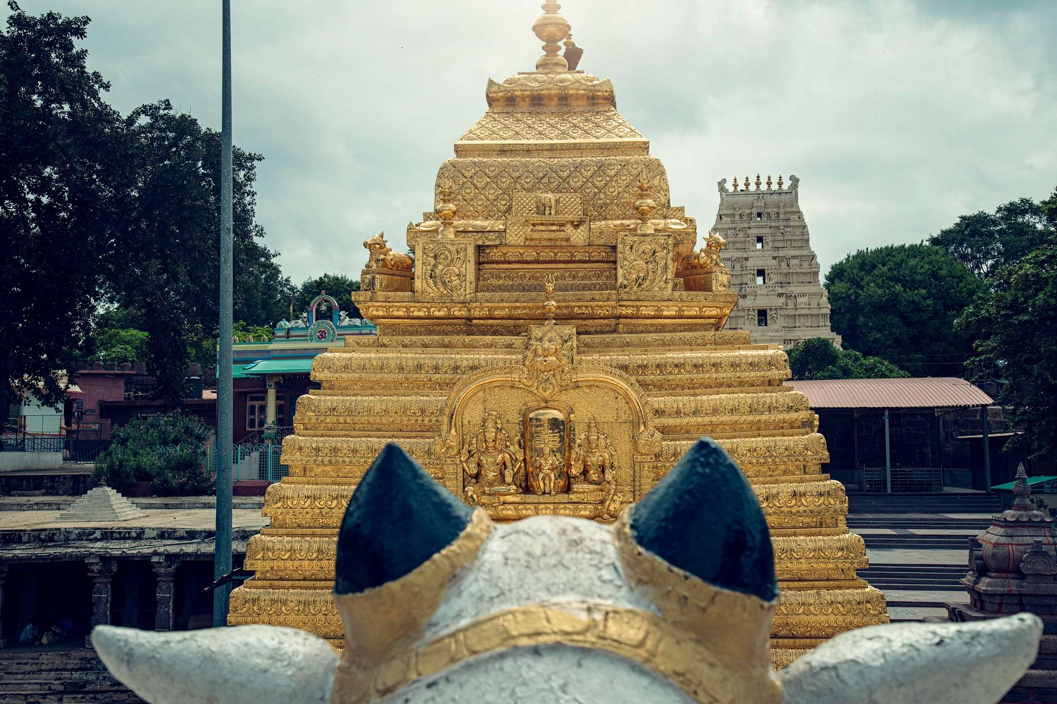 Mallikarjuna Jyotirlinga and Saktipeeth in Srisailam